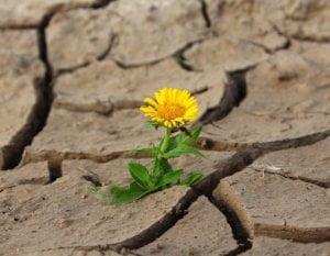 jak sobie radzić z wyrzutami sumienia