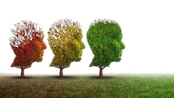 Dom opieki Alzheimer